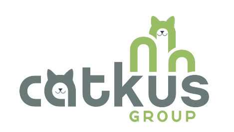 Kittens at Caktus: Raising Money and Awareness for Local Charity Alley Cats and Angels