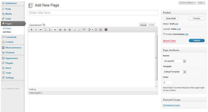 Screenshot of the WordPress CMS
