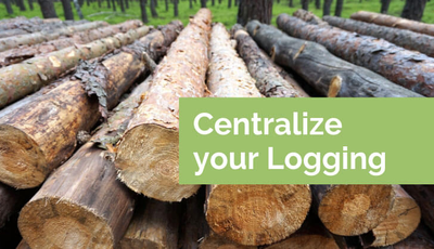 Image of tree logs